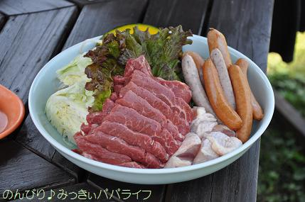 tateyama20117046.jpg