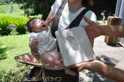 tateyama20117083.jpg