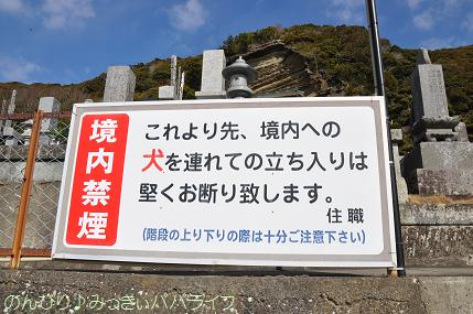 tateyama201202007.jpg