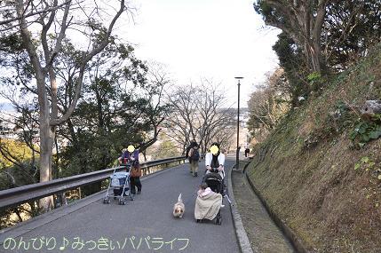 tateyama201202016.jpg