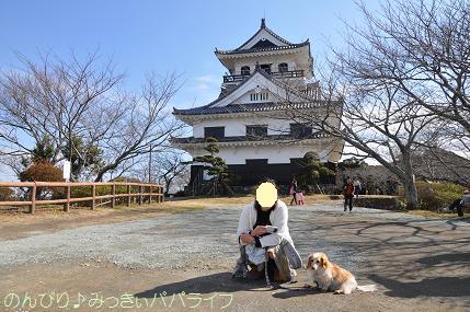tateyama201202017.jpg