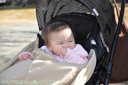 tateyama201202019.jpg