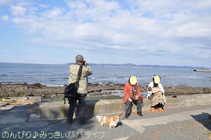 tateyama201202027.jpg