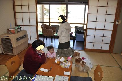 tateyama201202030.jpg