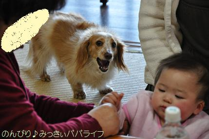 tateyama201202031.jpg