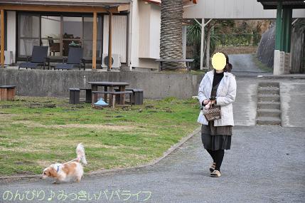 tateyama201202034.jpg