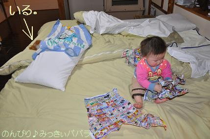 tateyama201202058.jpg