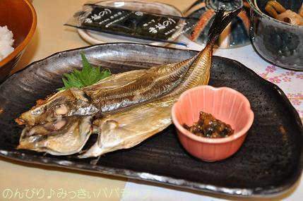 tateyama201202067.jpg