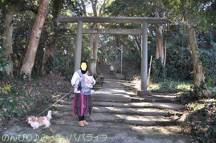 tateyama201202069.jpg