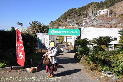 tateyama201202072.jpg