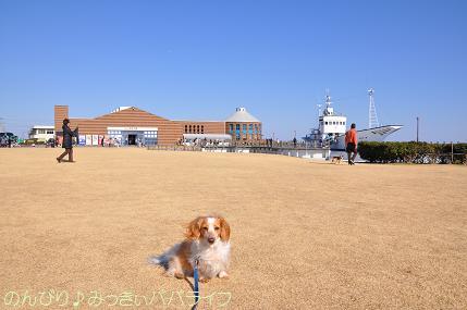 tateyama201202082.jpg