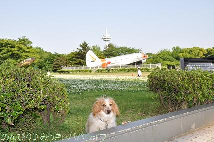 tokorozawa4.jpg