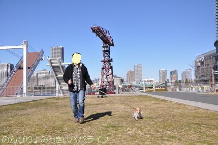 toyosu20110103.jpg