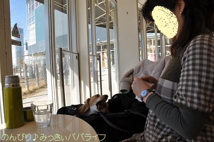 toyosu20110104.jpg