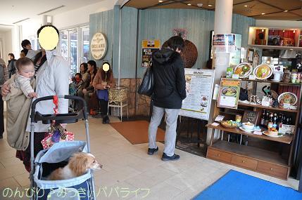 toyosu20120101.jpg