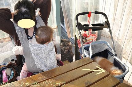 toyosu20120105.jpg
