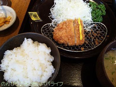 wakokatsu3.jpg