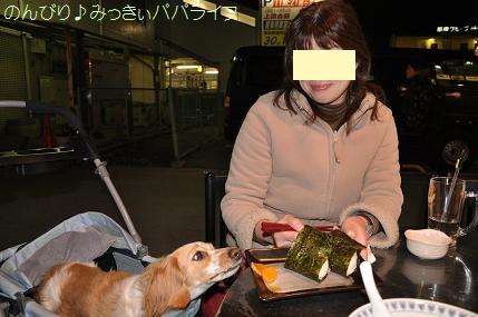 yakitori2010mar10.jpg