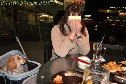 yakitori2010mar15.jpg