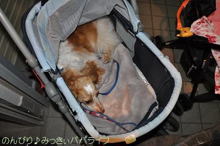 yakitori2011090712.jpg
