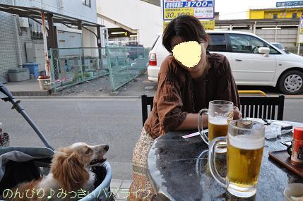 yakitori302.jpg