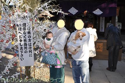 yakubarai20123.jpg