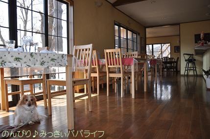 yamanaka003.jpg