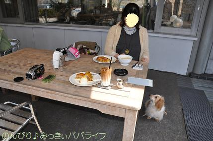 yamanaka014.jpg