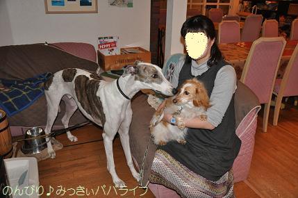 yamanaka036.jpg