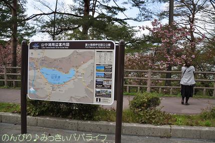 yamanaka2010051.jpg