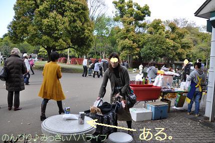 yoyogi11.jpg