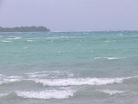 2010年1月19日今日のマイクロビーチ