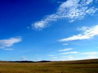 モンゴリアンブルー