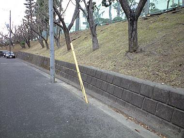 200902112.jpg