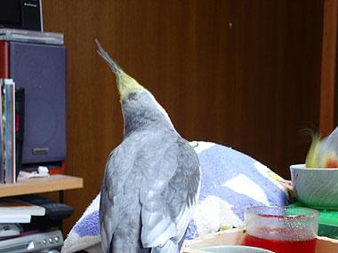 200902131.jpg