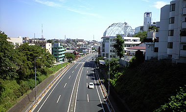 200905181.jpg