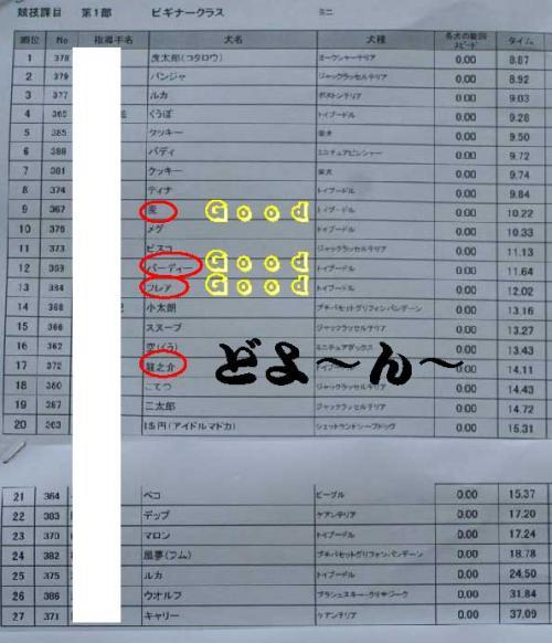 BN成績表2