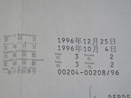DSC00565_R.jpg