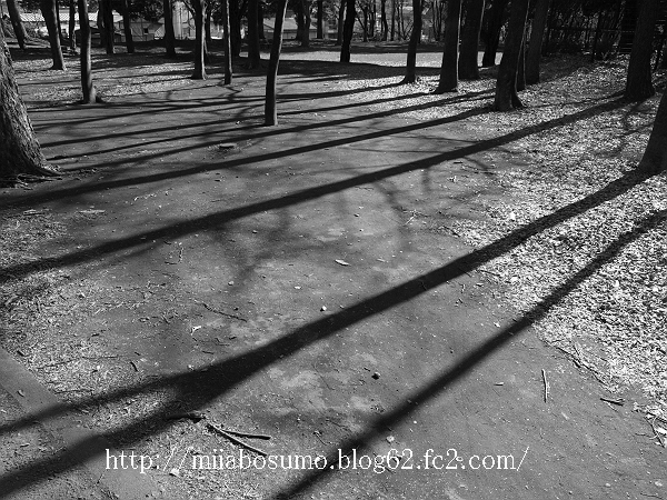 2009_02080027-s2.jpg