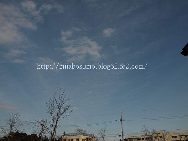 2009_03070030-s.jpg