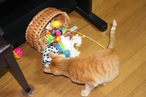 おもちゃかごとみい