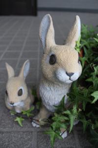 ウサギの親子とアイビー