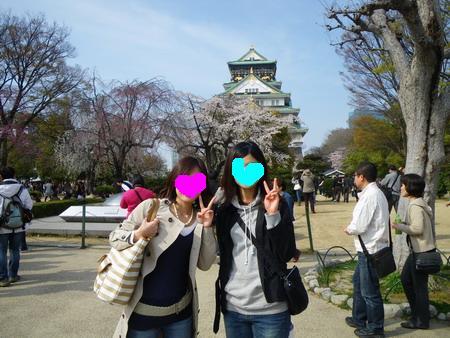 大阪城お花見