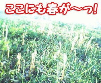 200605061712.jpg