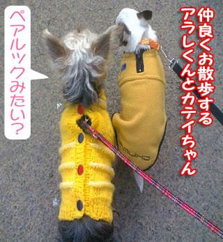 arare-katei-001.jpg
