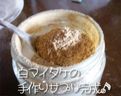 maitake03.jpg