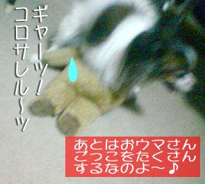 mikan0082.jpg