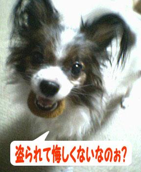 mikan0101.jpg
