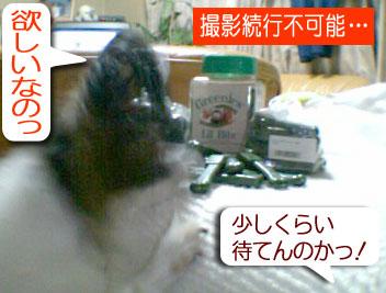 mikan0126.jpg