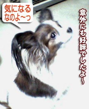 mikan0193.jpg